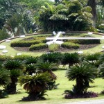 botanical garden clock