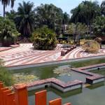 botanical garden coi pond