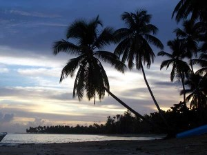 Las Terrenas  Beach