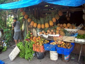 Dominican Fruit Stand