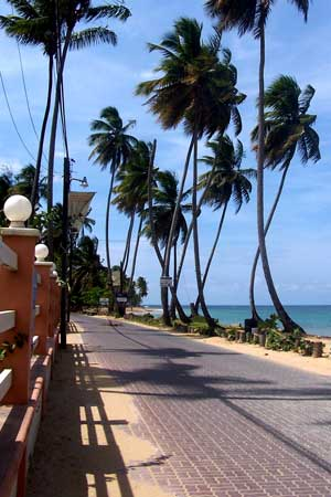 Dominican beach road
